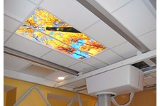- Image360-Plymouth-MI-Celing-Graphics-Healthcare