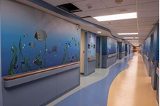 - Image360-Plymouth-WallMurals&WallPaper-HealthCare